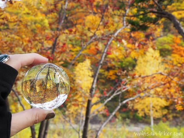 八剣山の紅葉とレンズボール