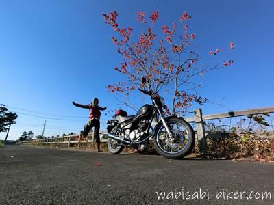 紅葉とバイクと自撮り