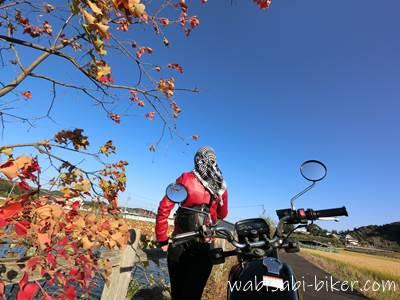 バイクと紅葉と自撮り