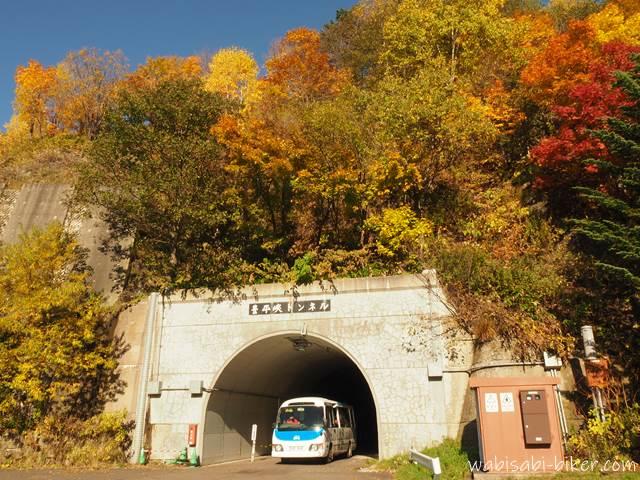 豊平峡ダムの紅葉と電気バス