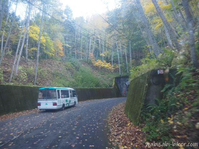 豊平峡ダムへ向かう電気バスと黄葉