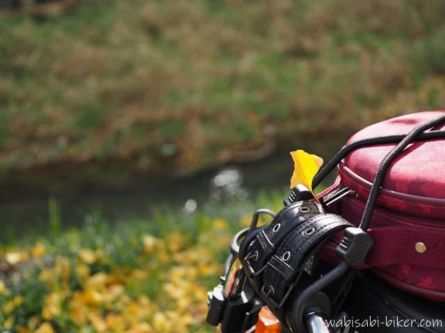 バイクにイチョウの落ち葉