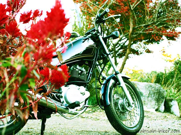 ケイトウと紅葉とオートバイ