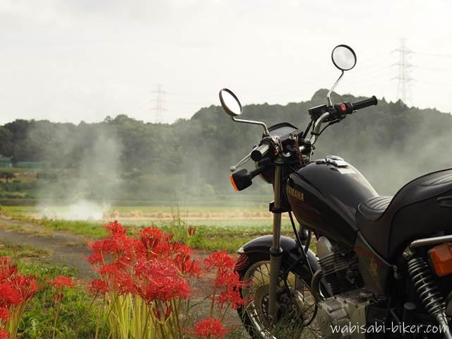 バイクと彼岸花と稲わら焼き