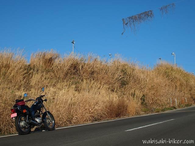 枯れ草とオートバイ