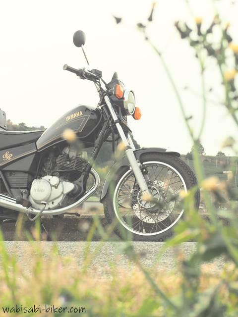 オートバイとノゲシらしき野草