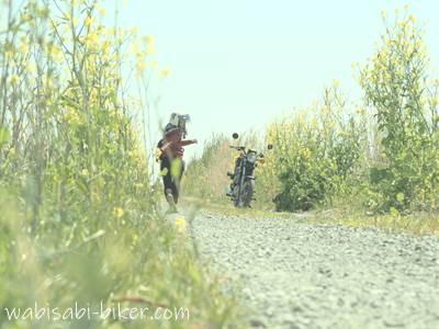 菜の花とバイク 自撮り