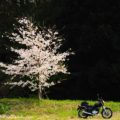 鬼平犯科帳 エンディング風なバイク写真も4回目☆YAMAHA SR125の四季