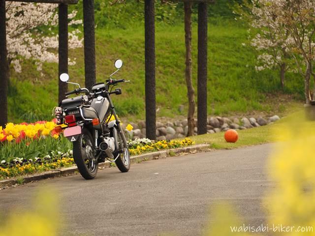 バイクとボール
