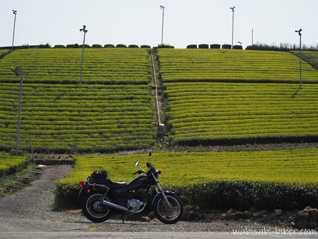 モノラックのある茶畑とバイク