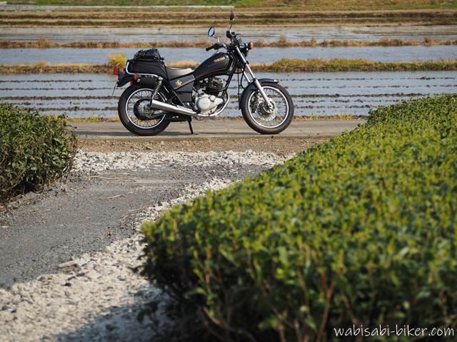 茶畑と水の張った田んぼとバイク