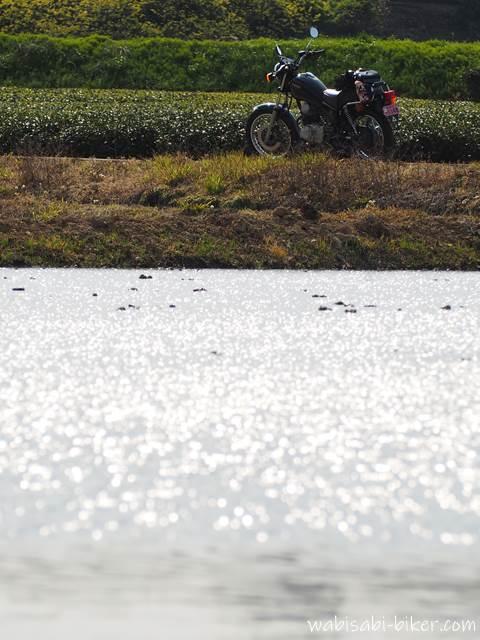 水の張った田んぼとバイク