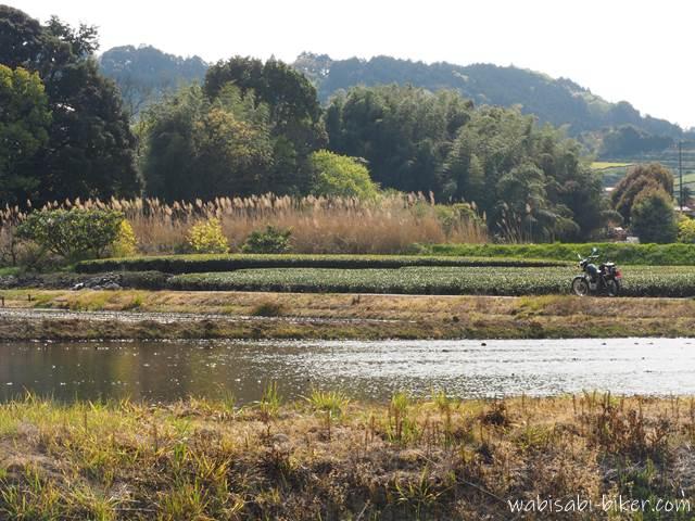 水を張った田んぼとバイク風景