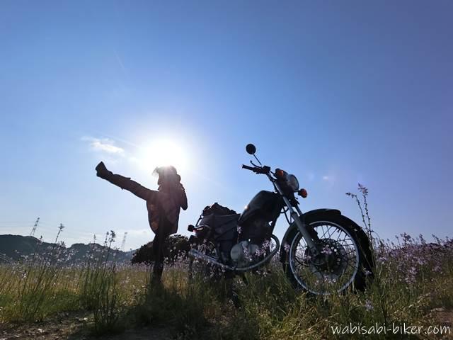 バイクとハイキック