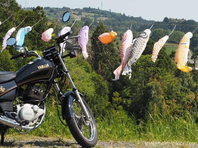 里山の鯉のぼりとオートバイ