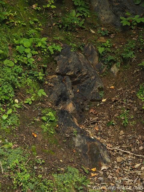 地表に露出した石炭