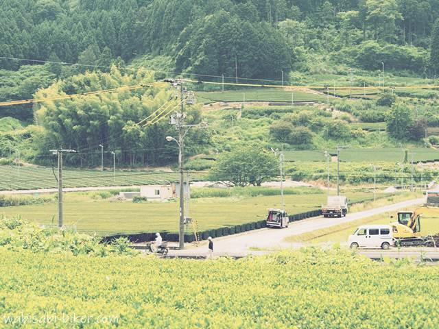田畑の中の工事現場