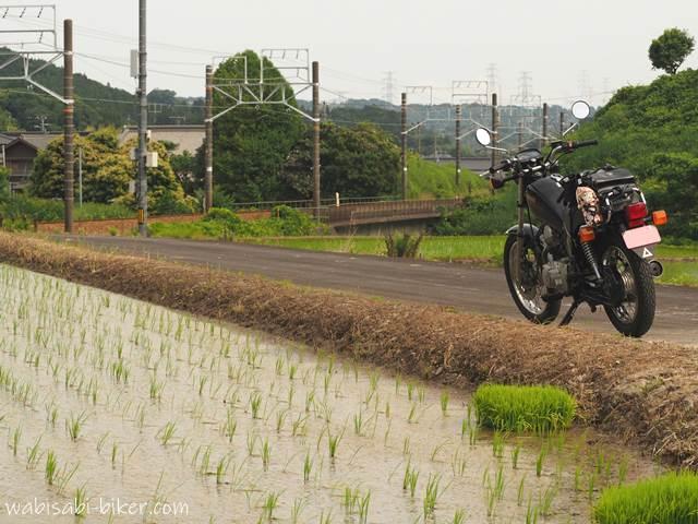 線路沿いの田んぼとオートバイ