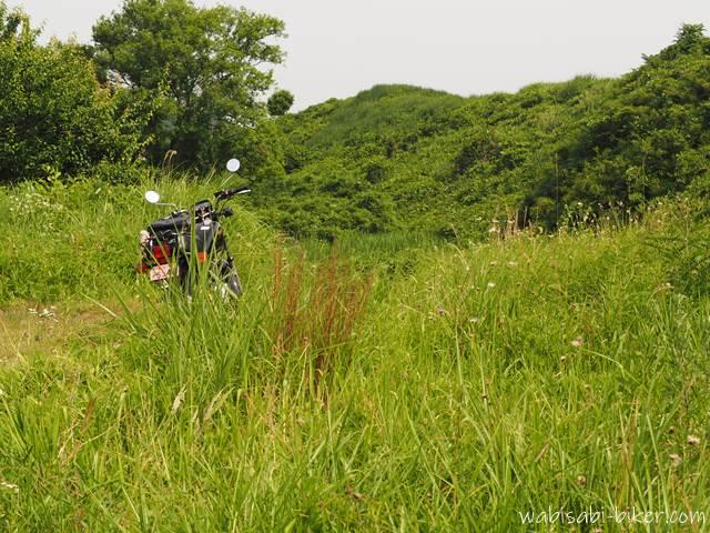 草むらの中のオートバイ