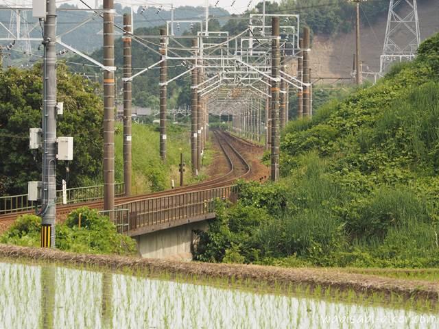 線路と水田