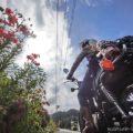 ユリと蝶とオートバイと☆バイク写真撮影定番化のリセット