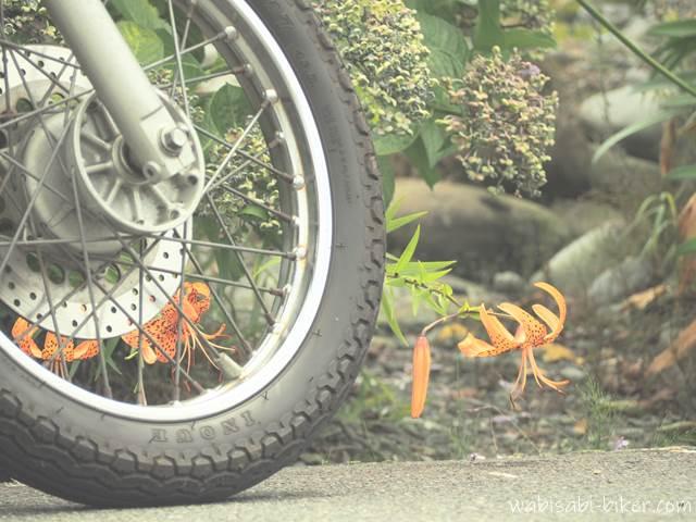 ユリとオートバイの前輪