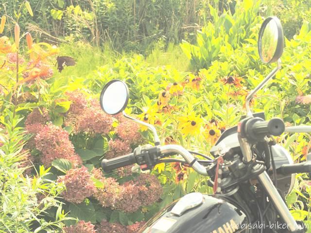 花と蝶とオートバイ
