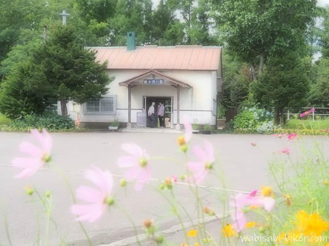 新十津川駅 駅舎と秋桜