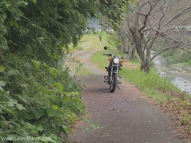川沿いに停車したオートバイ
