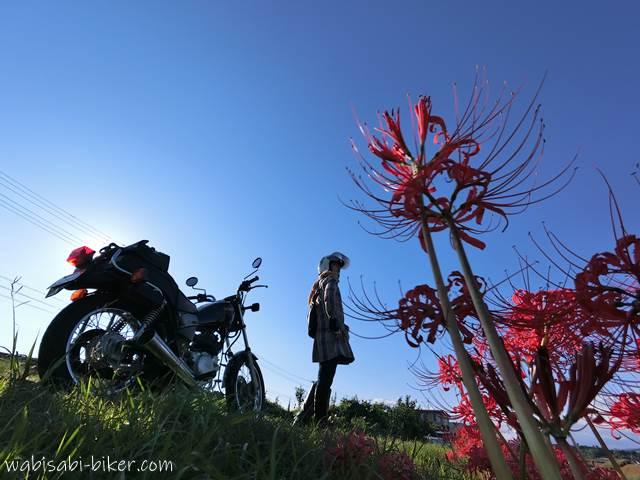 彼岸花とオートバイと女性ライダー