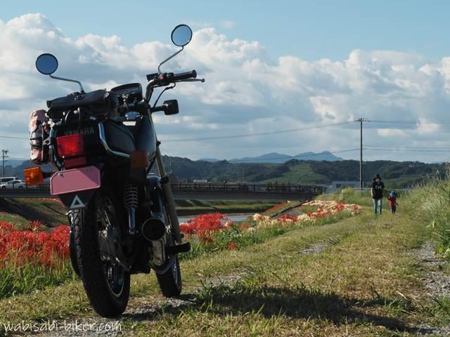 彼岸花咲く土手を散歩する親子とオートバイ