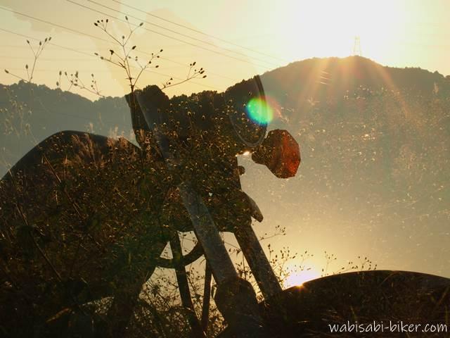 夕陽を浴びたひっつき虫とオートバイ