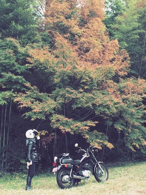 紅葉とバイク 他撮り風自撮り写真
