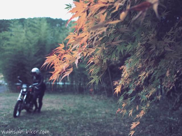 紅葉とバイク 他撮り風自撮り