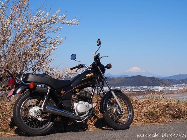 梅と富士山とオートバイ