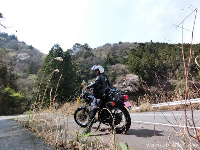 山の桜とオートバイ 自撮り