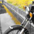 里山バイク写真撮影☆レンギョウの花・ツクシ