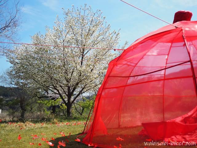 無人駅の芸術祭 桜と屋外アート