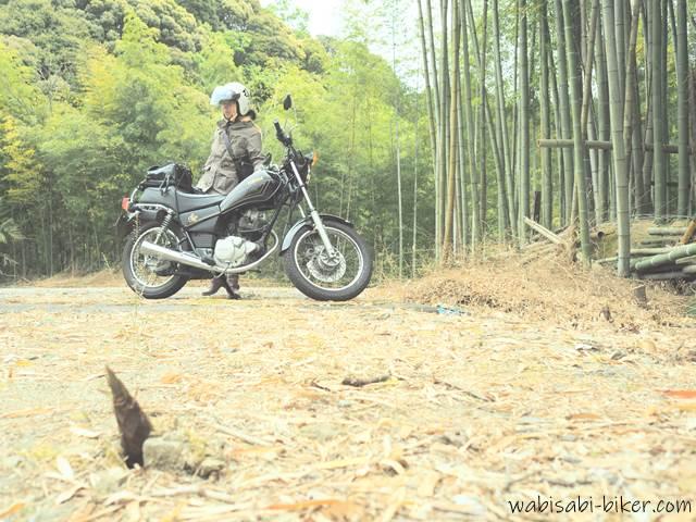タケノコとオートバイと女性ライダー