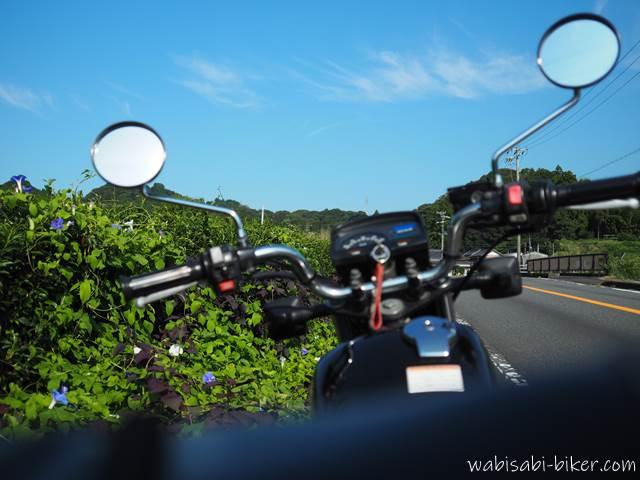 道沿いに咲く朝顔とオートバイ