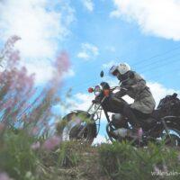 ツルボの花と女性ライダー