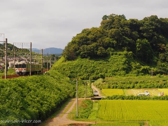 稲刈りと電車