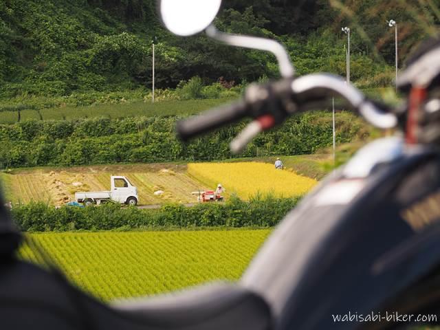 稲刈りとオートバイ