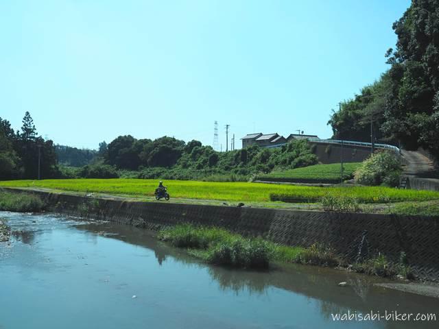 川沿いの田んぼを走る女性ライダー