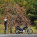 柿とオートバイと女性ライダー