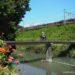橋の上の女性ライダーと電車と花