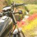 【ヒガンバナ】橋の上のバイク写真に憧れて☆YAMAHA SR125