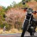 バイクで山桜を見に行く☆YAMAHA SR125