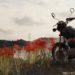 彼岸花と、バイク写真☆YAMAHA SR125